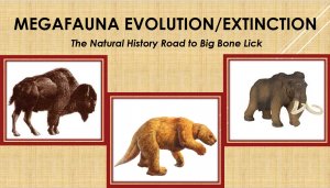 Program: Exploring Megafauna from the Pleistocene Epoch at Big Bone @ Boone County Public Library - Scheben Branch